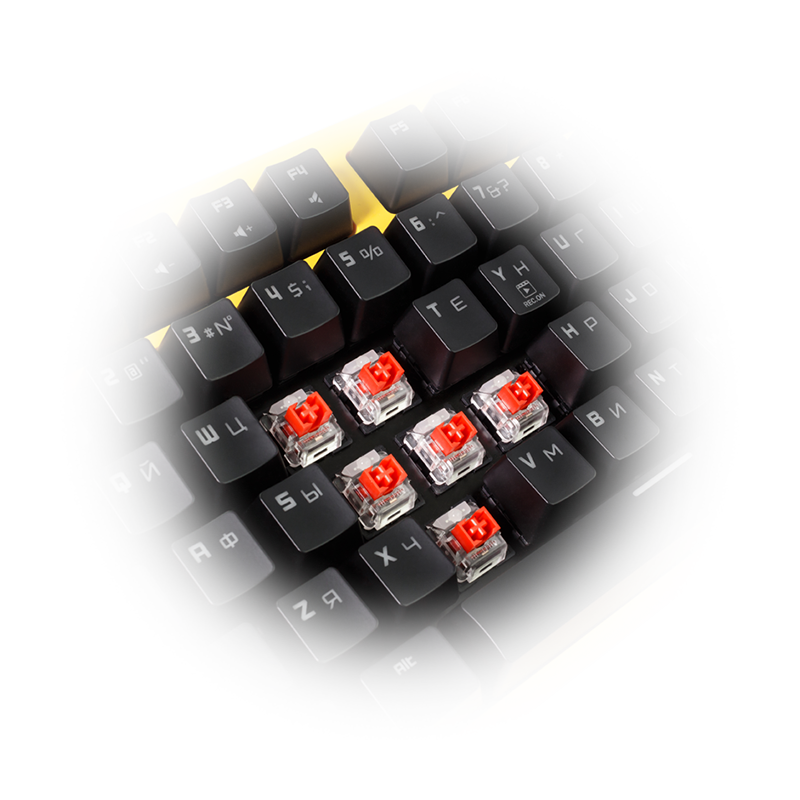 Hator Rockfall Mechanical Red Switches (HTK-606) image 5